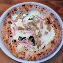 Pizza Panna prosciutto e funghi (Pizzeria Il Tamburello, Chuo, Tokyo)