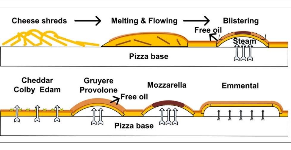 Formazione bolle sui formaggi