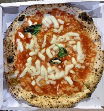 Margherita (L'Antica Pizzeria Da Michele Bologna)